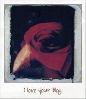 loveyourblogaward